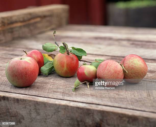 Red apples in wooden create