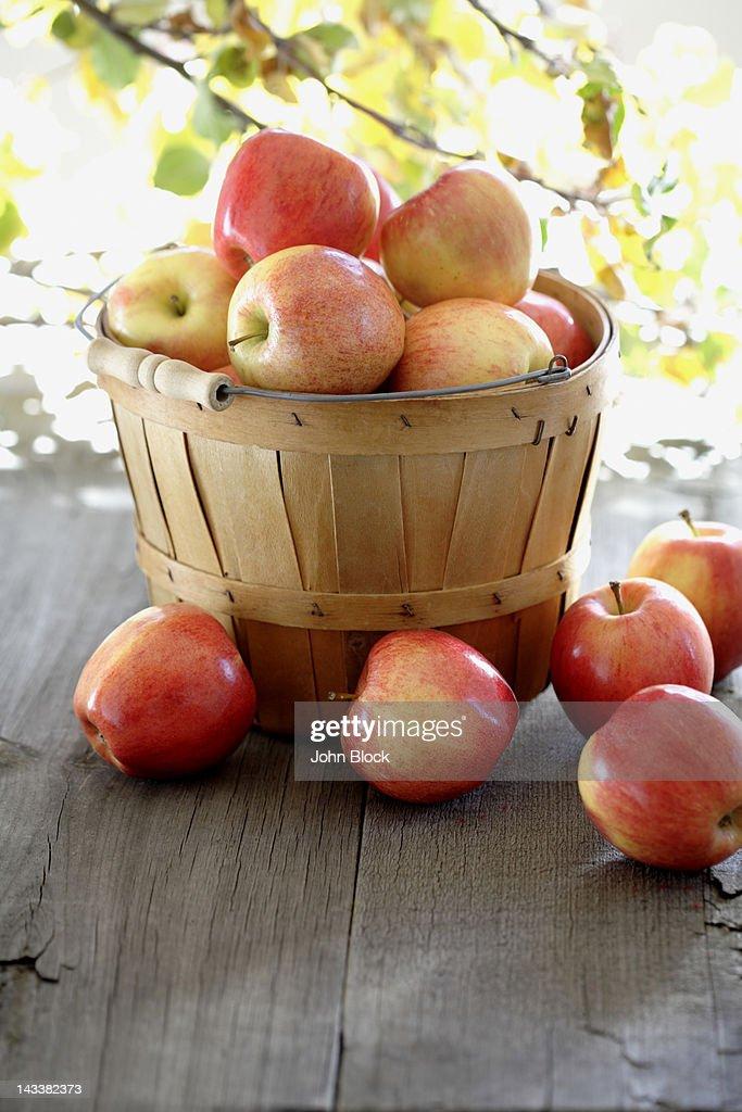 Red apples overflowing basked : Bildbanksbilder