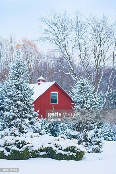 Rosso di un fienile coperto con neve
