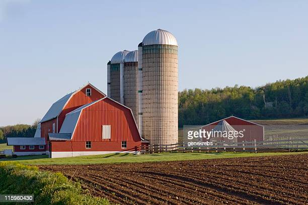 Red Barn in field