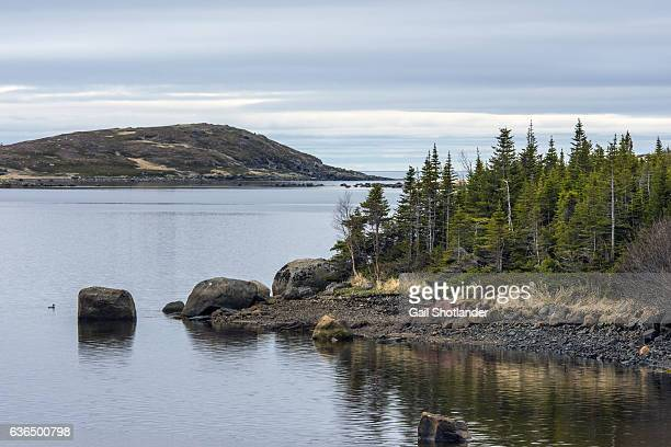 Red Bay Rugged Coastline