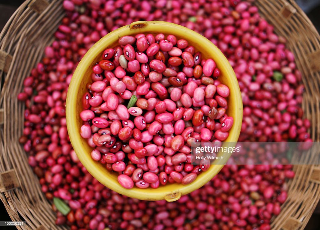 Red beans in market : Stock Photo