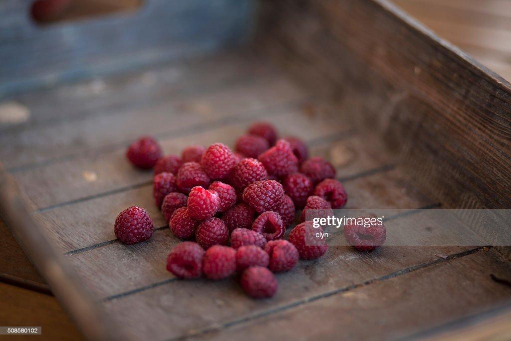 Bacche rosse : Foto stock