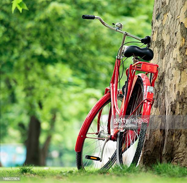Red Bike in the Park