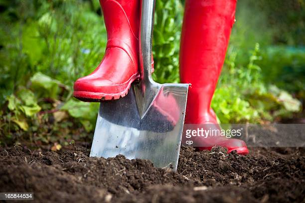 Red Boots Digging With Garden Spade
