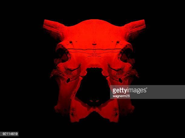 Red bull skull