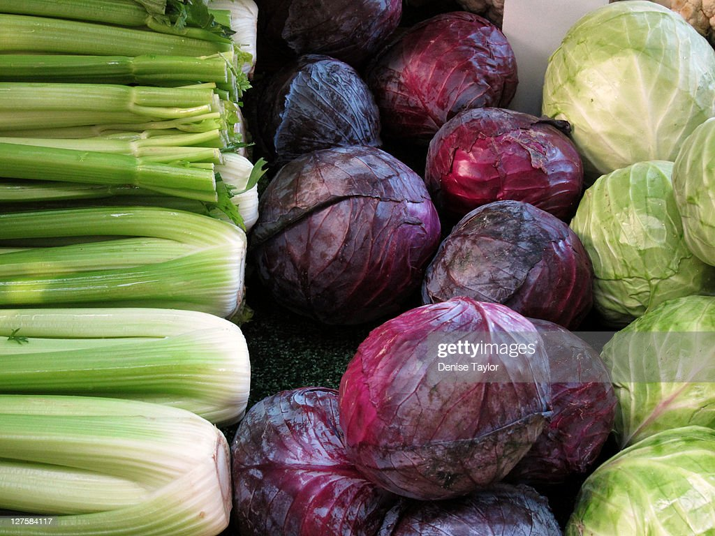 Red cabbage, green cabbage, celery : Stock Photo