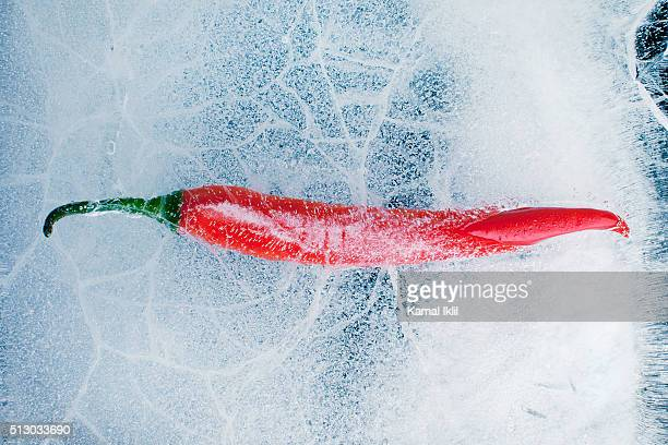 Red chili pepper frozen in ice