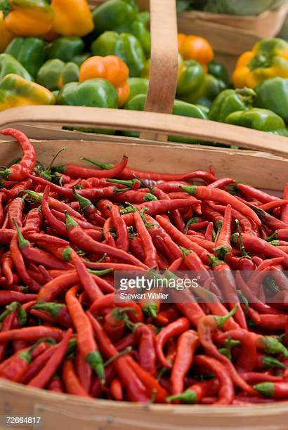 Red chili peppers and green bell peppers