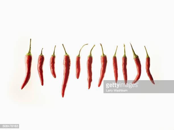 Red chilies in a row over white background