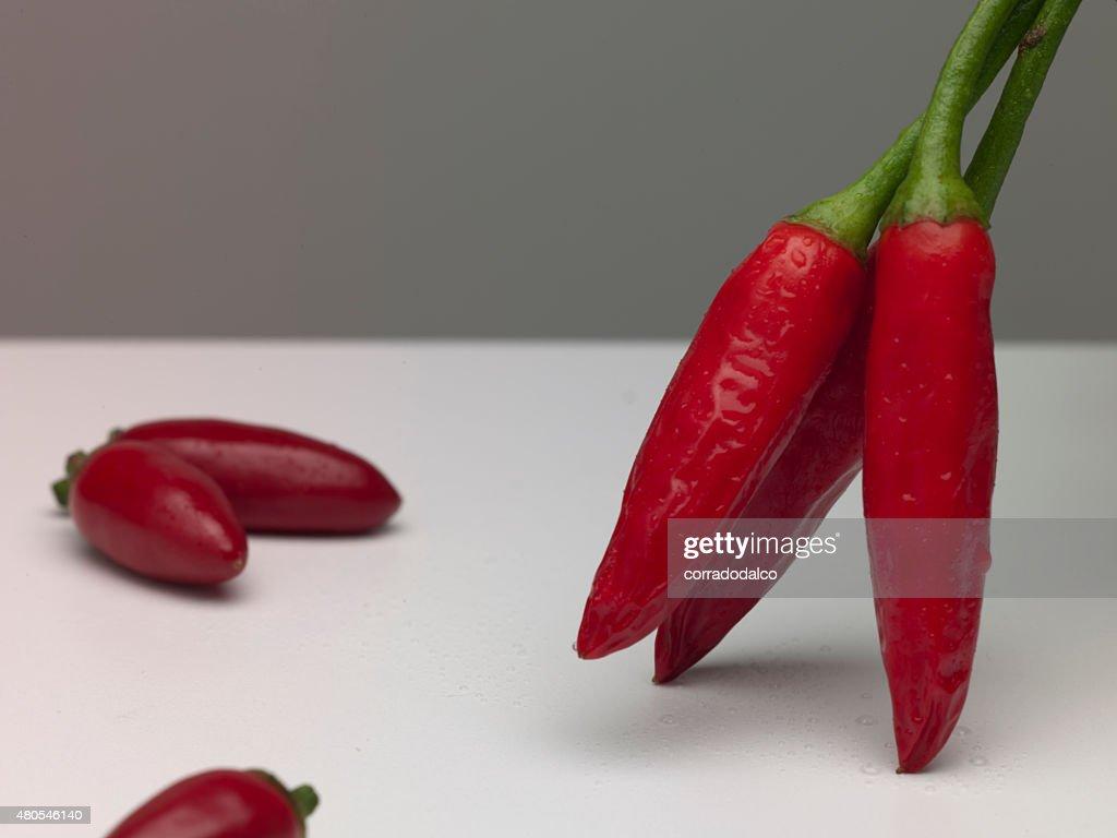 Pimientos chile rojo Aislado en blanco : Foto de stock