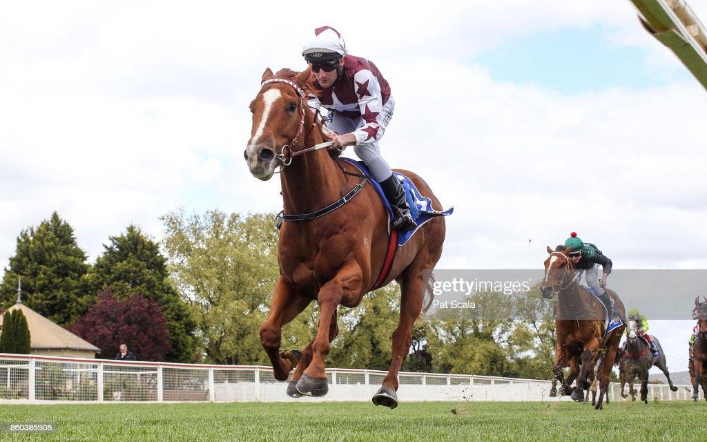 Red Choux's (NZ) ridden by Brad Rawiller wins the Mortimer Petroleum Maiden Plate at Sportsbet-Ballarat Racecourse on October 12, 2017 in Ballarat, Australia.