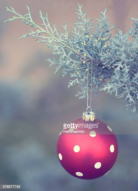 Red Christmas ball with spots in natural tree