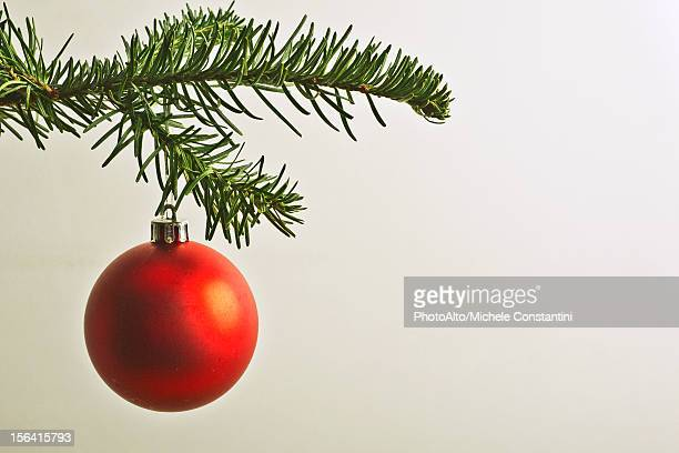 Red Christmas bauble hanging from Christmas tree