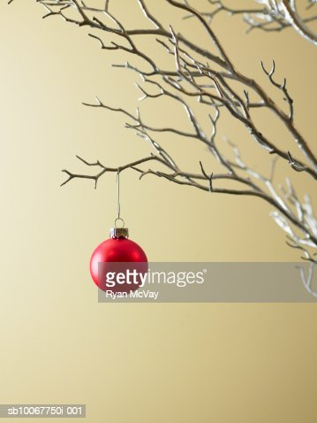 Red Christmas ornament hanging from tree : Foto de stock