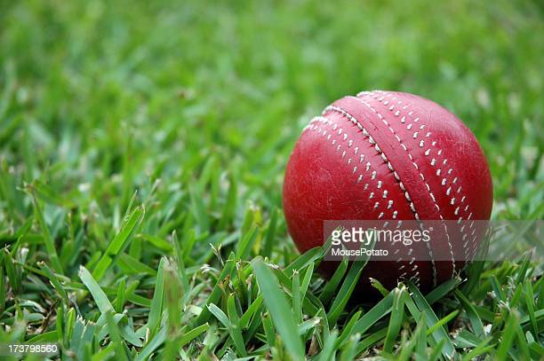Red cricket ball on the green grass
