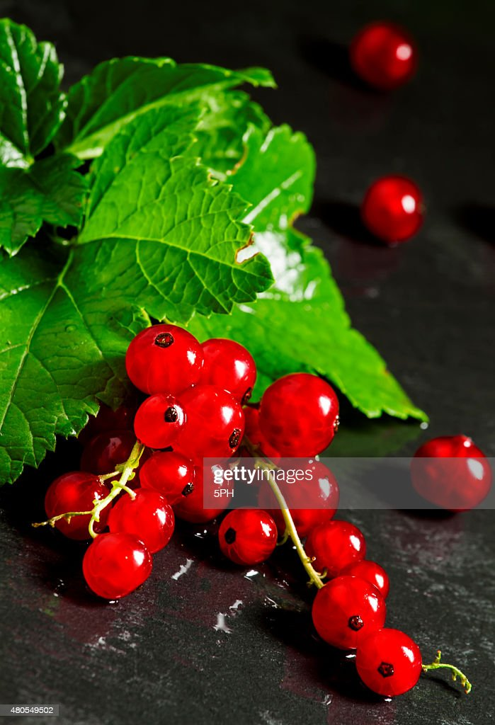 Red currants with leaves on a dark background : Stock Photo