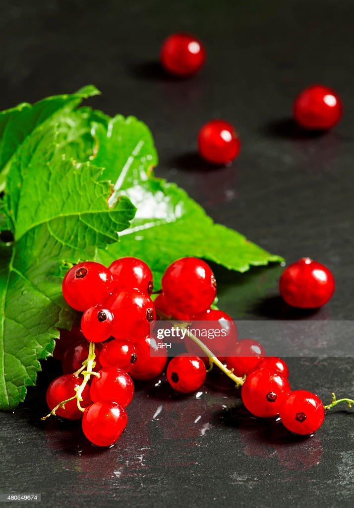 Vermelho Groselhas com folhas em fundo escuro : Foto de stock