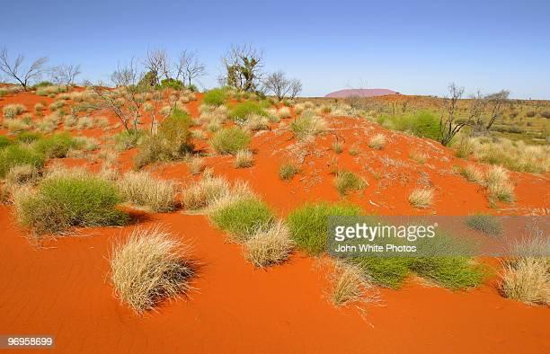 Red desert sand dunes. Outback Australia.