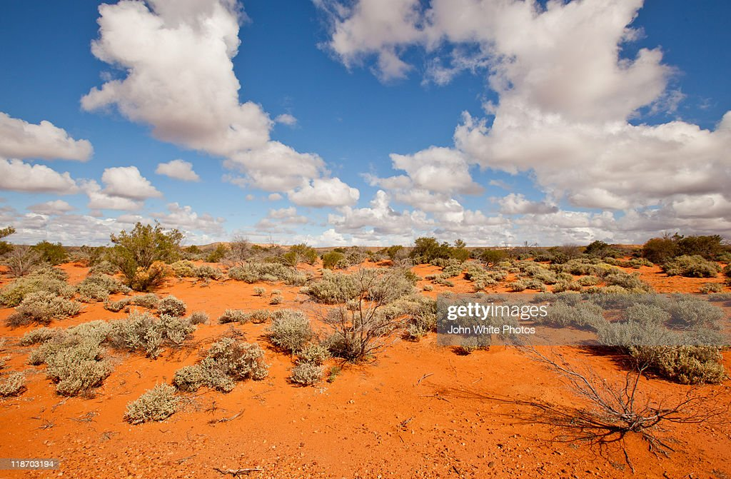 Red desert sand of outback Australia