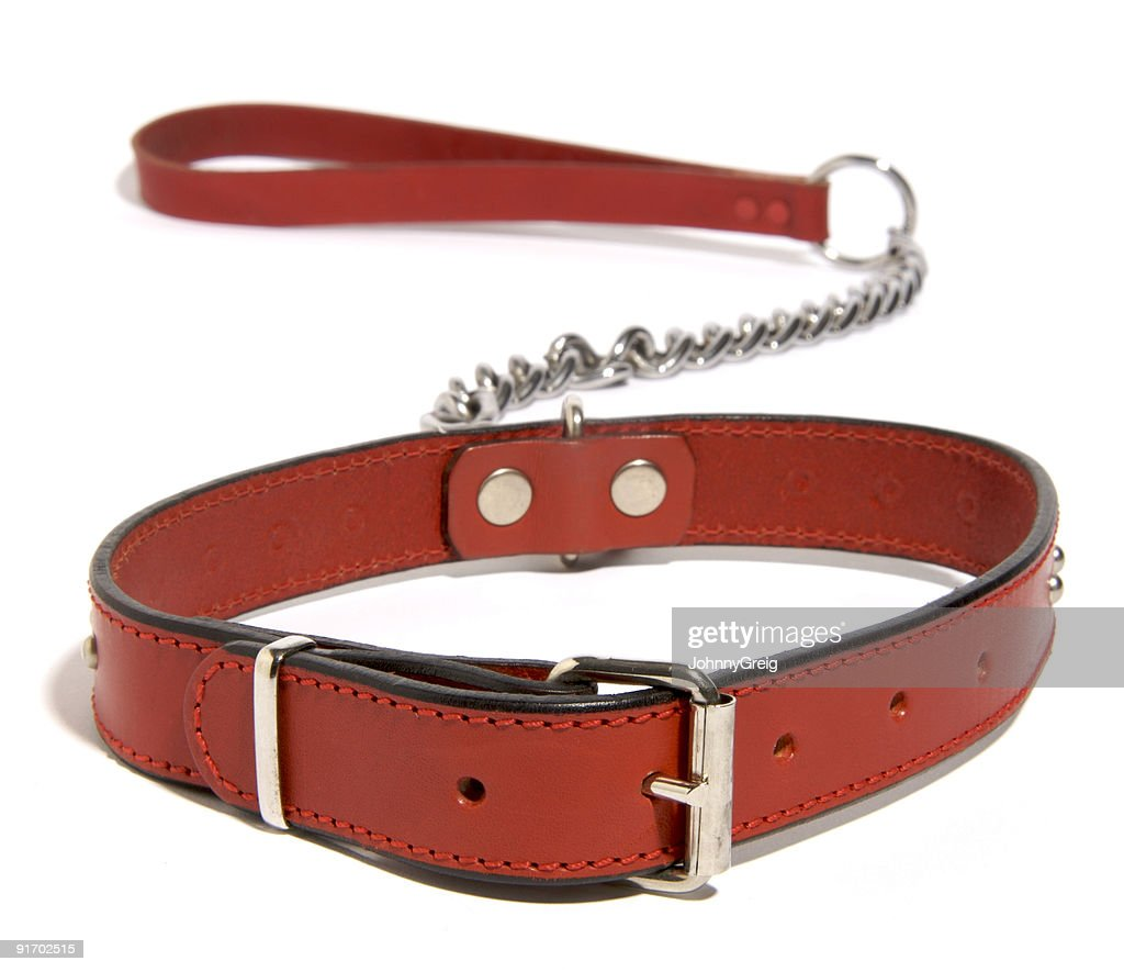 Red dog collar and lead