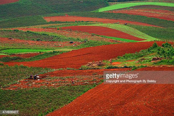 Red farmland with village,dongchuan,china
