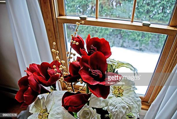 Red flowers by snow outside window