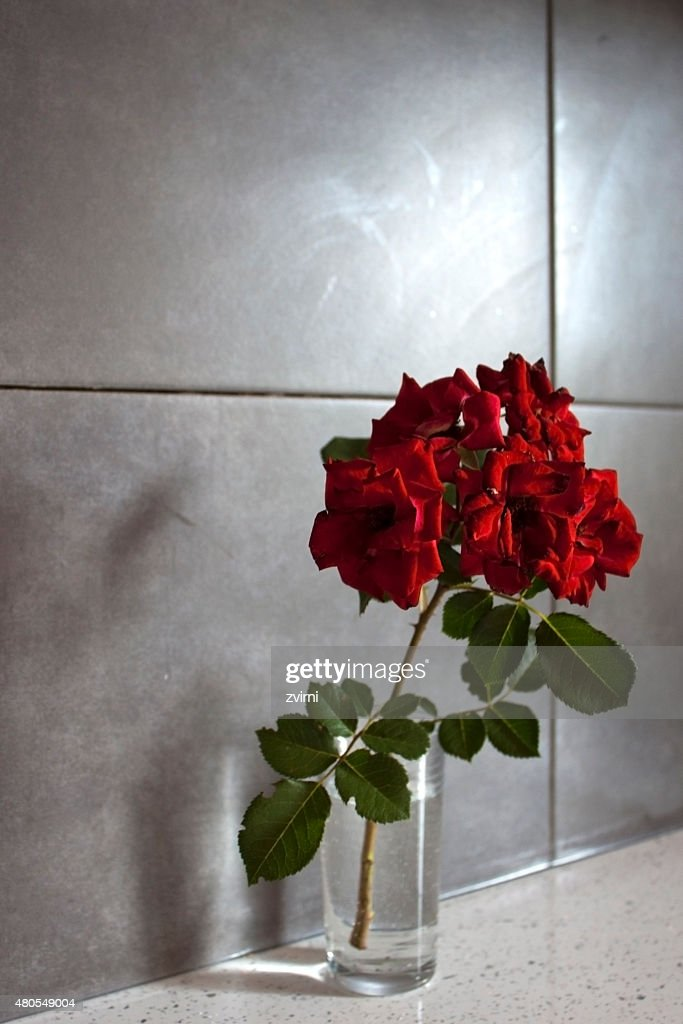 Red flowers in a glass : Stock Photo
