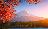 red frame of maple leaf and mt.Fuji at Kawaguchiko, Japan.