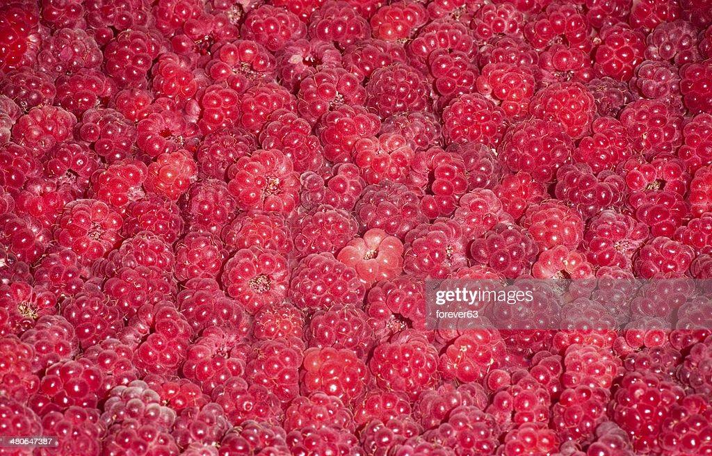 Vermelho fresco fundo de Framboesa : Foto de stock