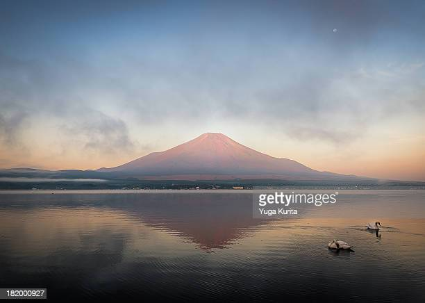 Red Fuji with Swans and the Moon