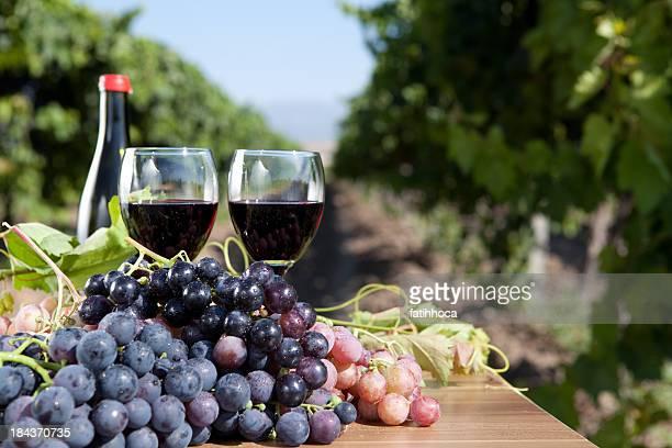 Raisin et vin rouge