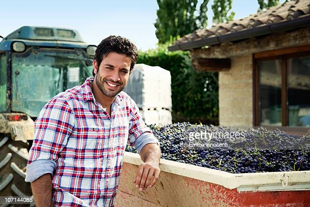 red grapes, harvested, truck, farmer, looking at