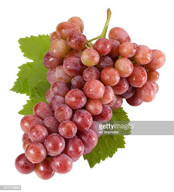 Red grapes isolated on white(clipping path)