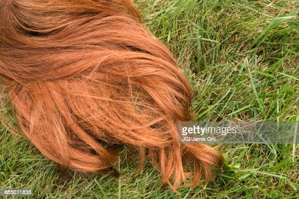 Red hair of Caucasian girl laying in grass