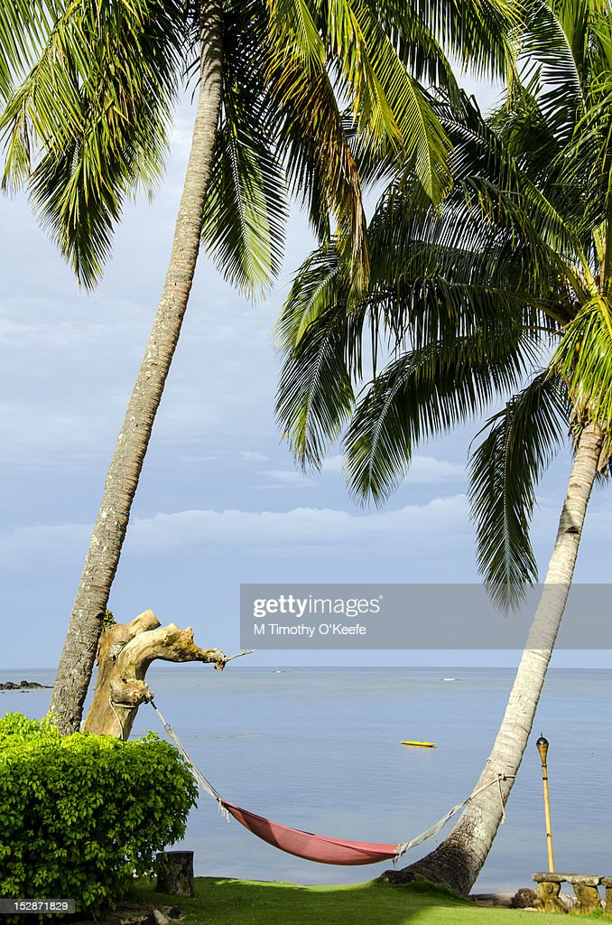 Red hammock between palms : Stock Photo