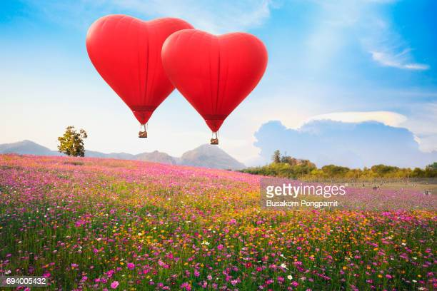 Red heart air balloon over on Beautiful Cosmos Flower in park