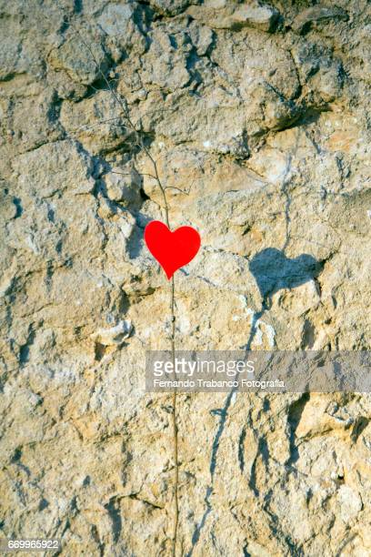 Red heart of love and shadow on stone wall