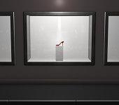Red highheel in shop window (digital)
