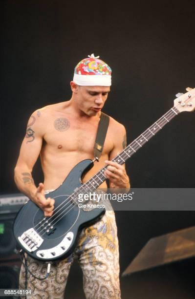 Red Hot Chili Peppers Flea TorhoutWerchter Festival Torhout Belgium