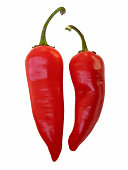 Red Hot Chili Peppers (clipped for easy use)