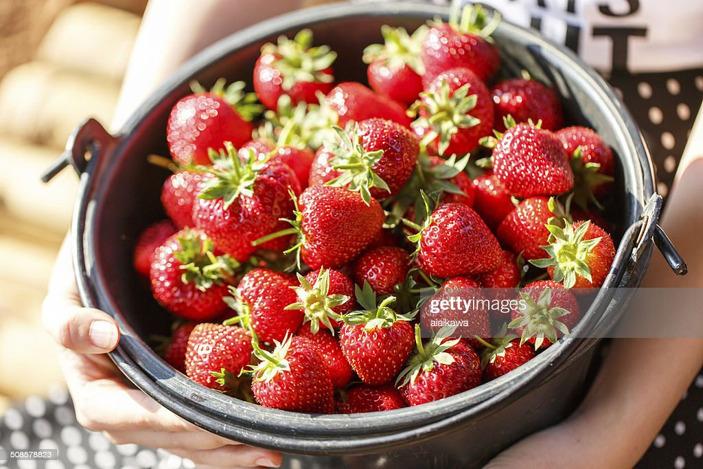 Red juicy fresh strawberries closeup in a basket : Stock Photo