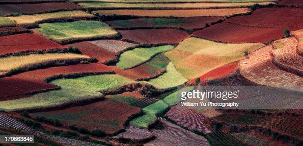 Red Land, Yunnan, China