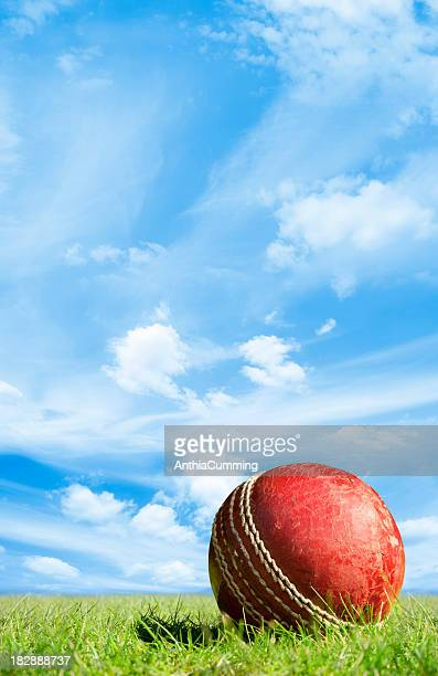 Red leather cricket ball on green grass under blue sky