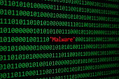 Red Malware and Binary code, Concept Security Malware and RansomWare attack.