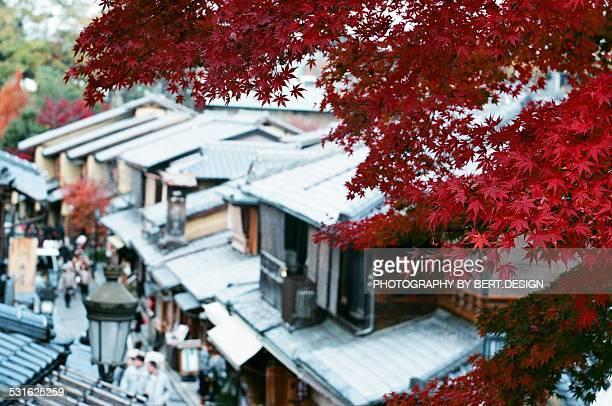 Red maple leaves in Sannen-Zaka path, Kyoto