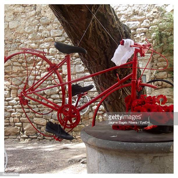 Red Painted Bicycle Hanging By Tree In Park