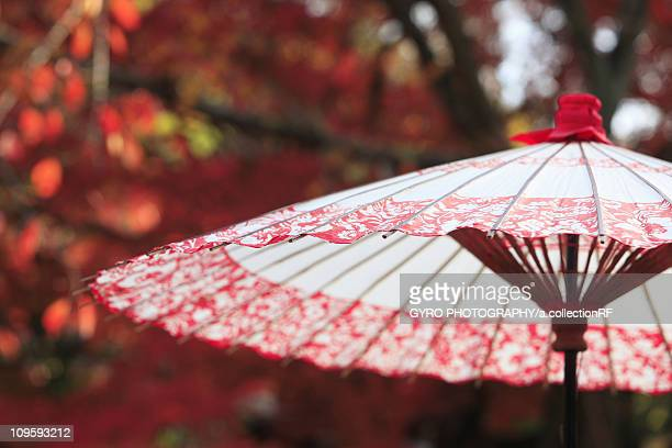 Red paper umbrella, Kyoto Prefecture, Honshu, Japan