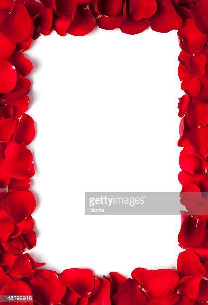 Red petals frame