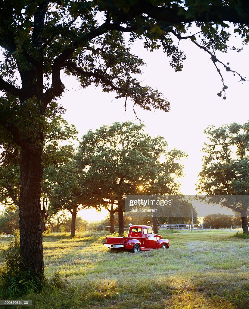 Red pick-up truck in field : Stock Photo